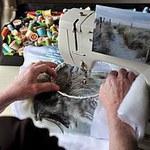 Шьем и вышиваем на машинке - Ярмарка Мастеров - ручная работа, handmade