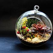 Цветы в стеклянном шаре, флорариум,цветочная композиция