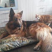 Для домашних животных, ручной работы. Ярмарка Мастеров - ручная работа Матрасы для больших собак.. Handmade.
