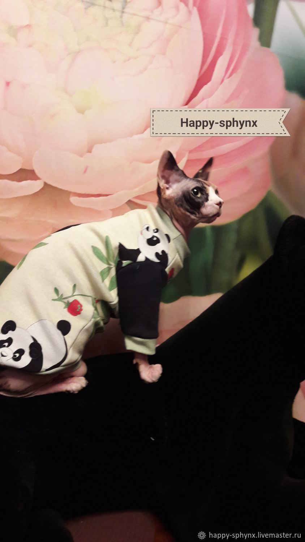 Cat clothes ' sweatshirt with fleece-Funny pandas', Pet clothes, Biisk,  Фото №1
