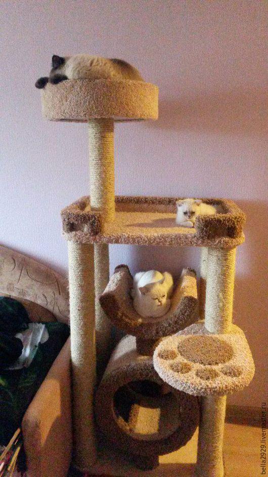 """Аксессуары для кошек, ручной работы. Ярмарка Мастеров - ручная работа. Купить Комплекс-когтеточка """"Фьюжен"""". Handmade. Комплекс для кошек"""