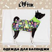 Для домашних животных, ручной работы. Ярмарка Мастеров - ручная работа ПОПОНА Зимняя. Handmade.