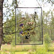 Для дома и интерьера handmade. Livemaster - original item the herbarium in the glass. Herbarium of herbs. Wildflowers. Handmade.