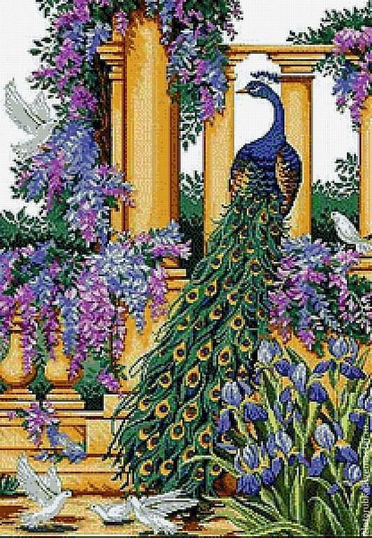Павлин в райском саду.Схема