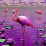 Фламинго - Ярмарка Мастеров - ручная работа, handmade