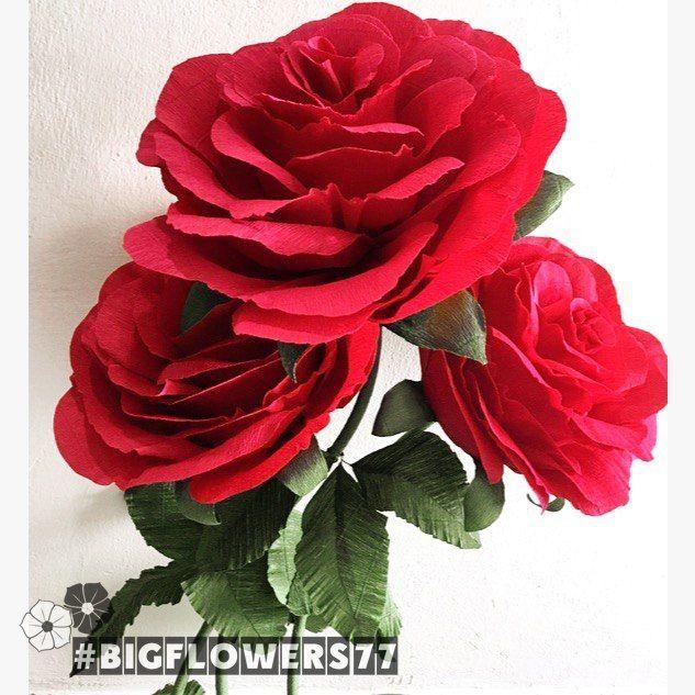 Роскошные ростовые розы из гофрированной бумаги, Элементы интерьера, Москва, Фото №1