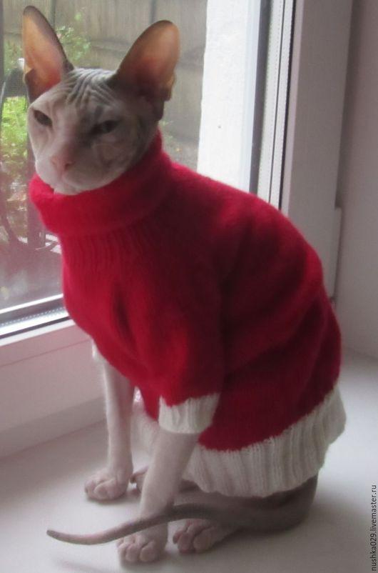 Одежда для кошек, ручной работы. Ярмарка Мастеров - ручная работа. Купить Свитер для кошки/кота. Handmade. Ярко-красный, Сфинкс