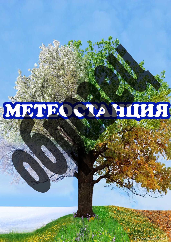 "Лэпбук ""Метеостанция"", Сценарии мероприятий, Мыски,  Фото №1"