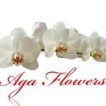 Aga Flowers - Ярмарка Мастеров - ручная работа, handmade
