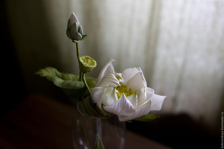 Цветы из шелка..  Белый лотос, Цветы, Петергоф, Фото №1