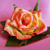 """Украшения ручной работы. Ярмарка Мастеров - ручная работа Брошь """"Чайная роза"""". Handmade."""