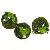 Картины и панно handmade. Livemaster - original item Set Of panels of stabilized moss and plants. Handmade.