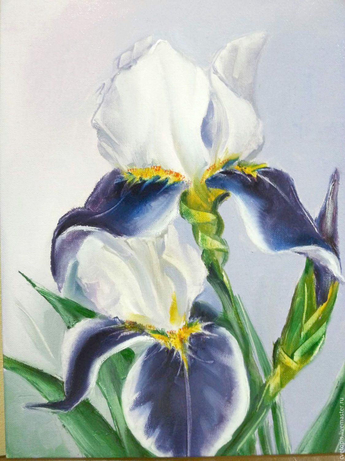 Oil painting irises air shop online on livemaster with shipping flower paintings handmade livemaster handmade buy oil painting irises air izmirmasajfo