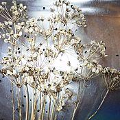 Растения ручной работы. Ярмарка Мастеров - ручная работа Зрелые соцветия лука-лизуна на веточке. Handmade.
