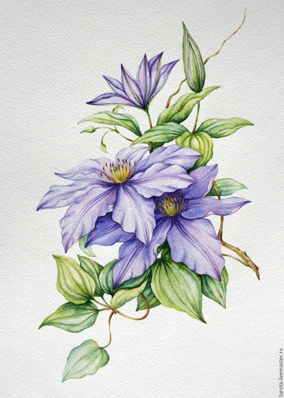 Как нарисовать рисунок цветов
