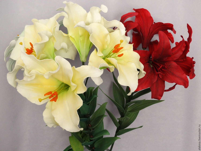 Лилия белого цвета фото