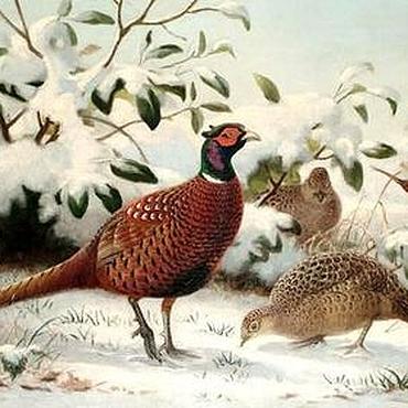 Картины и панно ручной работы. Ярмарка Мастеров - ручная работа Картина с птицами. Handmade.