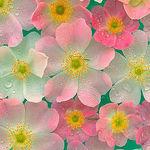 Fleur-decor - Ярмарка Мастеров - ручная работа, handmade