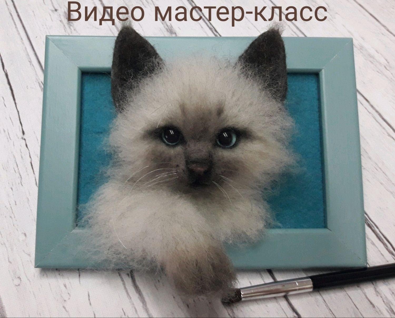 """Видео Мастер-класс """"Котик в рамке """", Войлочная игрушка, Фрязино,  Фото №1"""