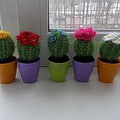 Сувениры и подарки ручной работы. Ярмарка Мастеров - ручная работа Кактусы цветущие малые. Handmade.