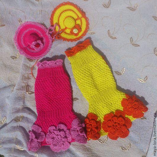 """Одежда для собак, ручной работы. Ярмарка Мастеров - ручная работа. Купить Платье """"Цветочная поляна"""". Handmade. Бирюзовый, для собак, шерсть"""