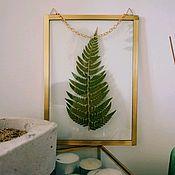 Цветы и флористика handmade. Livemaster - original item the herbarium in the glass. Handmade.