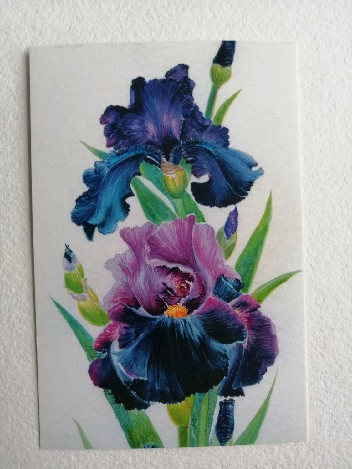 """Набор почтовых открыток для посткроссинга """"Волшебные ирисы"""", Открытки, Москва,  Фото №1"""