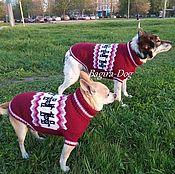 """Для домашних животных, ручной работы. Ярмарка Мастеров - ручная работа Свитера- двойка для собак """" Собаки Богов """". Handmade."""