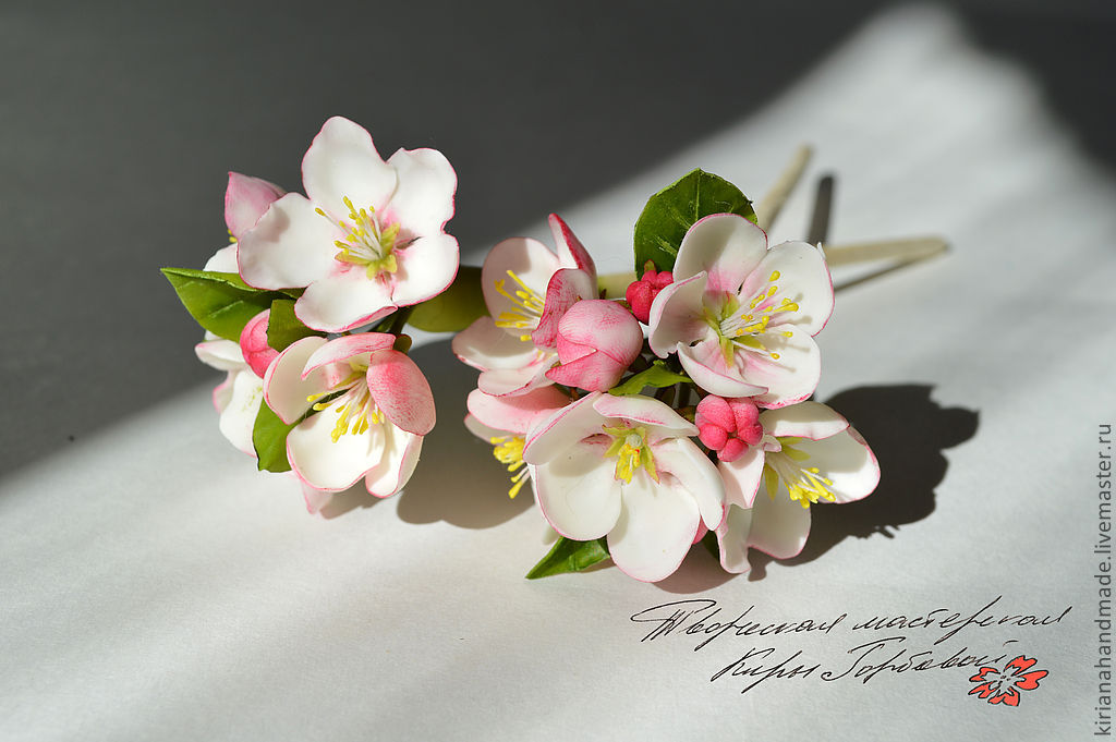 цветов яблони