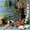 Кладовая природы (prirodidar) - Ярмарка Мастеров - ручная работа, handmade