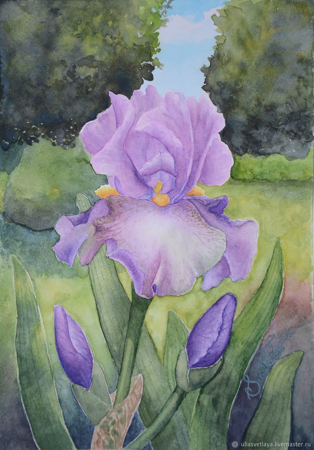 Painting irises watercolor painting watercolor flowers shop ukrainian artist yulia bright buy watercolor paintings buy watercolor irises buy painting colors izmirmasajfo