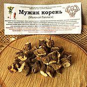Материалы для творчества handmade. Livemaster - original item Man`s root (Pallas`s Milkweed). Handmade.