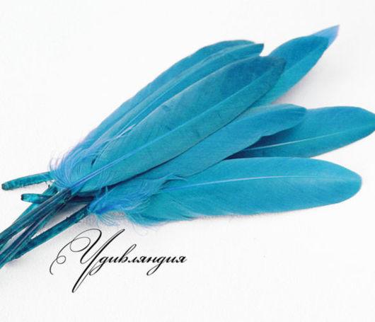 Другие виды рукоделия ручной работы. Ярмарка Мастеров - ручная работа. Купить Перо гуся натуральное, окрашенное голубое №95.. Handmade.
