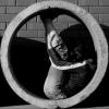 Мистеревич Елена (fotomistika) - Ярмарка Мастеров - ручная работа, handmade