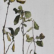 Картины ручной работы. Ярмарка Мастеров - ручная работа Листья яблони. Handmade.