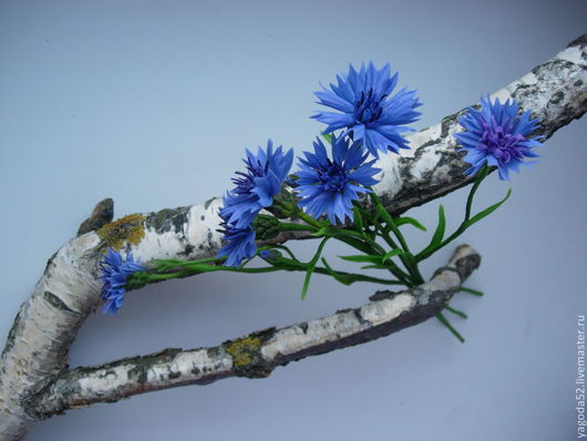 Цветы ручной работы. Ярмарка Мастеров - ручная работа. Купить Василёк полевой. Handmade. Тёмно-синий, полимерная глина
