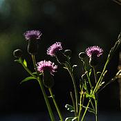 """Картины и панно ручной работы. Ярмарка Мастеров - ручная работа Фотокартина """"Простой сиреневый цветок"""". Handmade."""