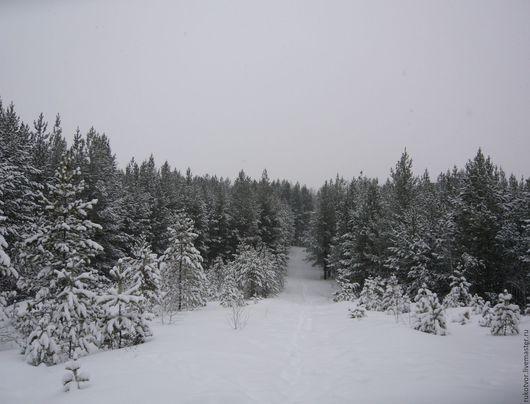 """Фотокартины ручной работы. Ярмарка Мастеров - ручная работа. Купить """"Сказочный лес"""". Handmade. Картина, фото, зимний пейзаж"""