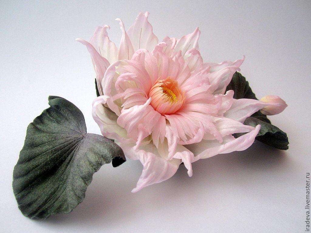 Цветок лотос купить