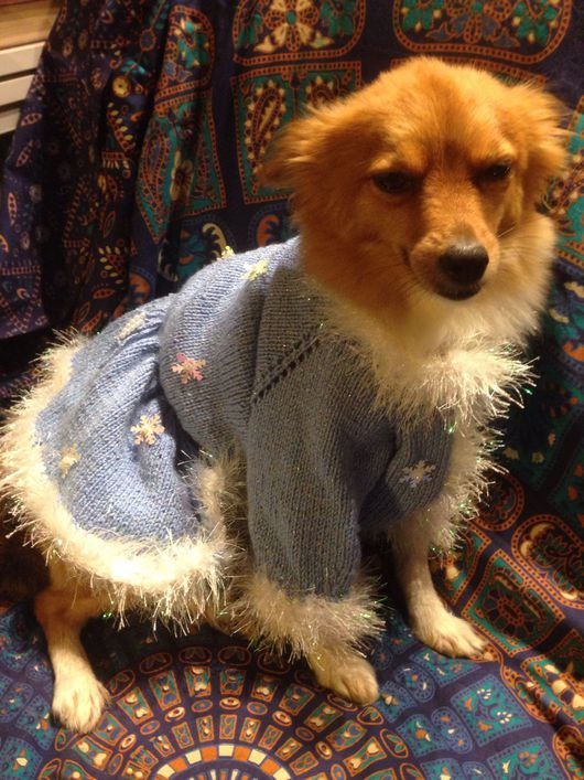 Одежда для собак, ручной работы. Ярмарка Мастеров - ручная работа. Купить Снегурочка. Handmade. Черный, мода, чихуахуа