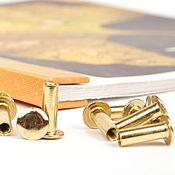 Винты для альбомов 30 мм 20 шт, скрапбукинга, металлические