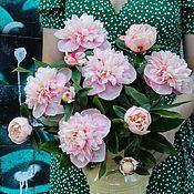 handmade. Livemaster - original item Bouquet of peonies made of cold porcelain (polymer clay). Handmade.