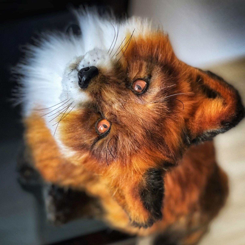Лисёнок Слай, Мягкие игрушки, Климовск,  Фото №1