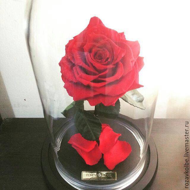 Стеклянная колба для цветов купить