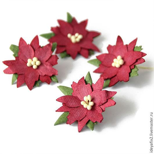 Цена указана за 1 цветок.   Диаметр цветочка 4 см.
