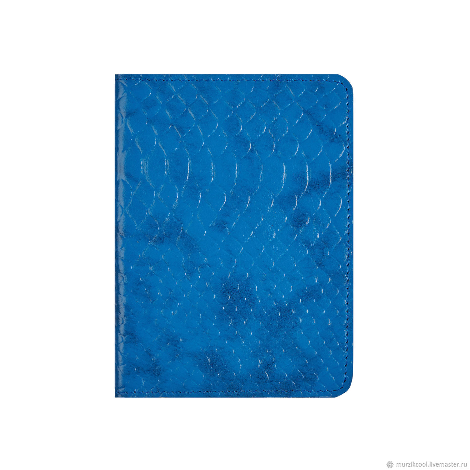 Euro passport cover Blue Python, Passport cover, Moscow,  Фото №1