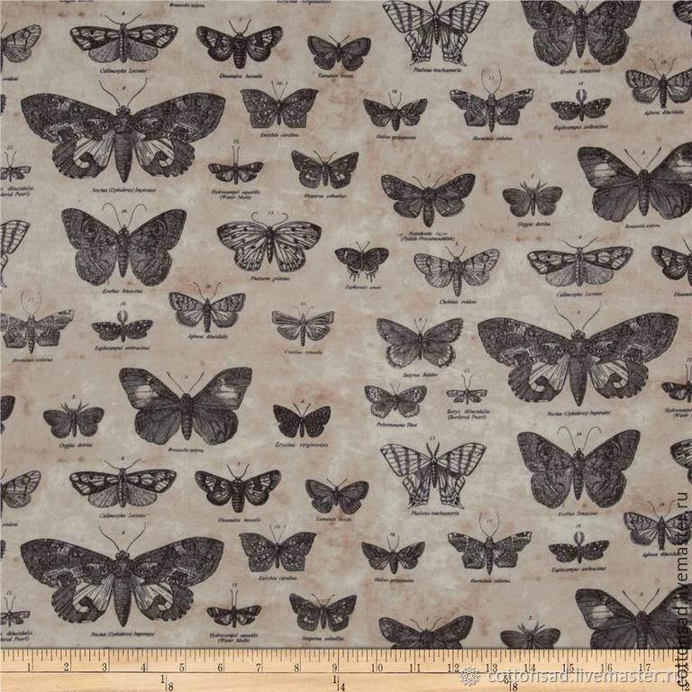 "Ткань- Тим Хольц (2 цвета) "" Бабочки "". 100% хлопок, Ткань, Москва, Фото №1"