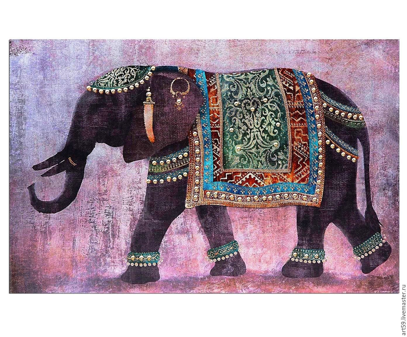 elephant, Pictures, St. Petersburg,  Фото №1