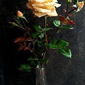 Украшения ручной работы. Ярмарка Мастеров - ручная работа Роза садовая из полимерной глины(холодный фарфор ). Handmade.