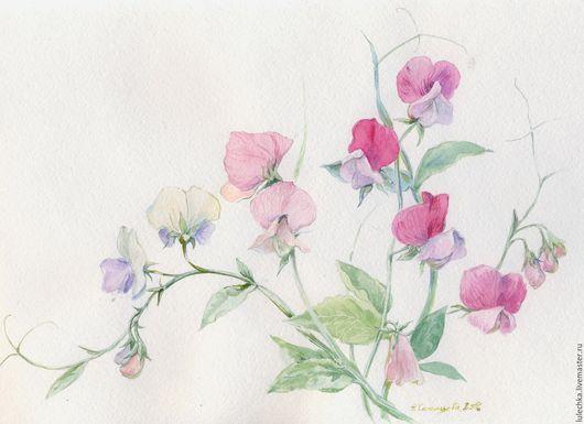 Картины цветов ручной работы. Ярмарка Мастеров - ручная работа. Купить Душистый горошек. Handmade. Комбинированный, цветы акварелью
